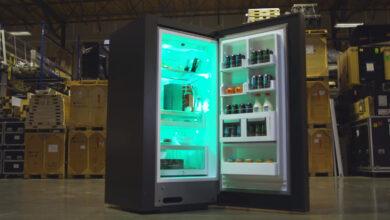 Photo of Xbox regalará un refrigerador edición Series X